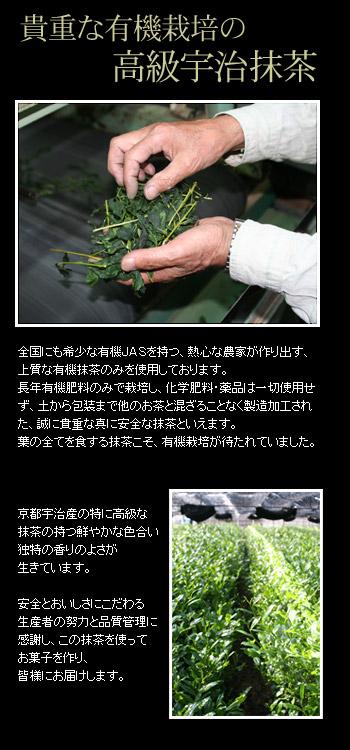 有機栽培の高級抹茶