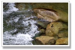 西山の名水で作る水ようかん
