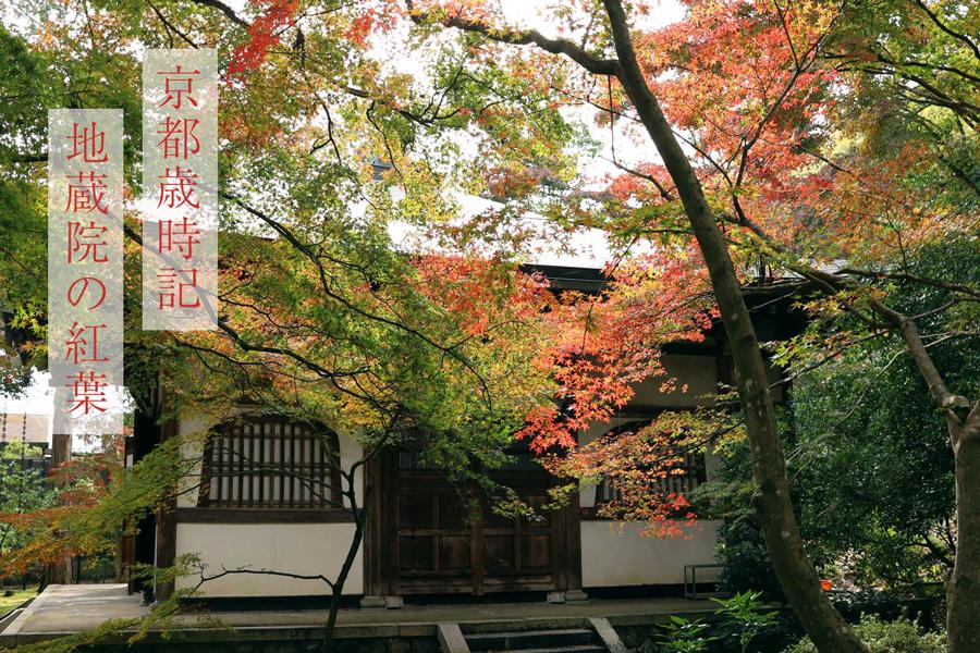 京都歳時記 地蔵院の紅葉