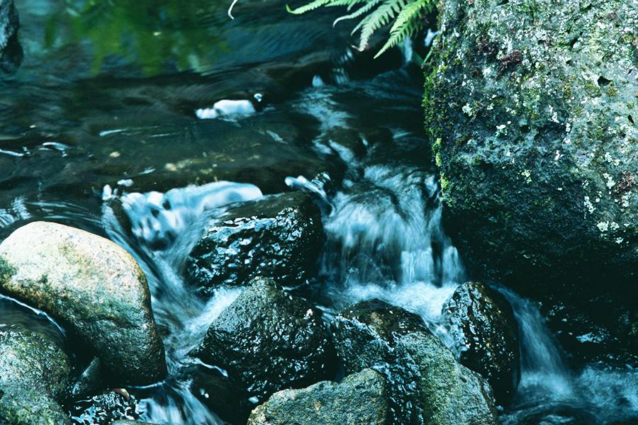 京都西山の地下水