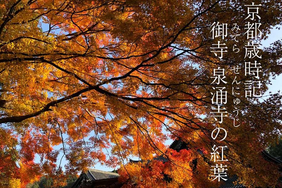 /images/top2/top-saijiki201812mitera.jpg