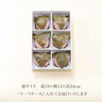 さくら餅6個箱