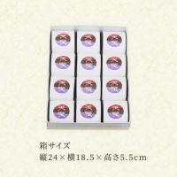 天楽12個箱